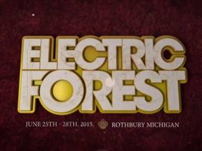 Bassnectar, Skrillex, Flume, Big Gigantic headline Electric Forest 2015 Preview
