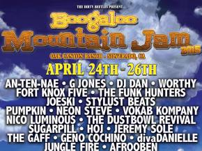 Top 10 Boogaloo Mountain Jam Artists Preview
