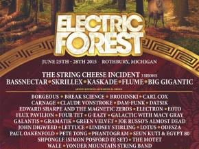 Four Tet, Galantis, Brodinski join Electric Forest 2015 lineup Preview