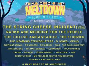 Summer Meltdown just melted our faces with its 2017 lineup. Preview